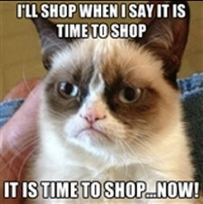 Time to shop now - grumpy cat