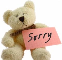bear-sorry-240x230